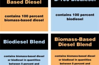 Biodiesel label